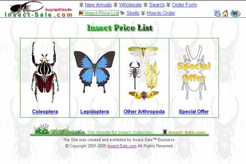 Buôn qua mạng… côn trùng ép khô!