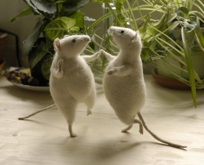 Kiểm soát chuột nhà và chuột hoang