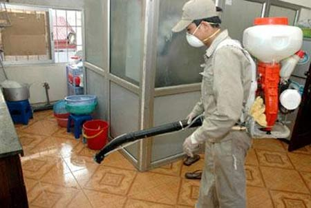 Dùng thuốc diệt côn trùng đúng cách
