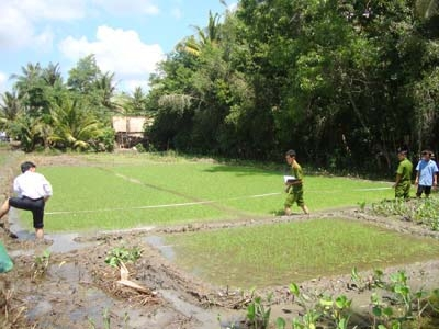 Tập trung diệt trừ chuột hại lúa và hoa màu