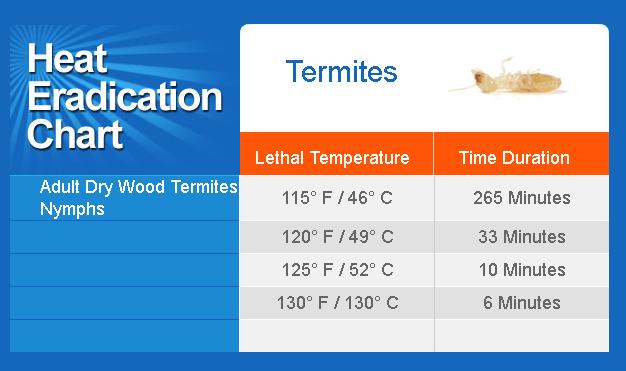 Diệt mối gỗ bằng nhiệt