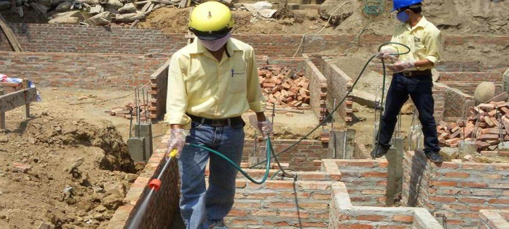 Công ty diệt mối Hùng Thịnh nói về tác hại của Mối với các công trình xây dựng
