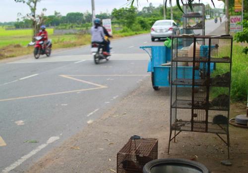 Chợ chuột của dân nhậu Sài Gòn