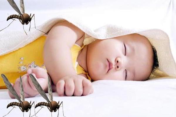 Tự phòng bệnh sốt xuất huyết hiệu quả vào mùa dịch
